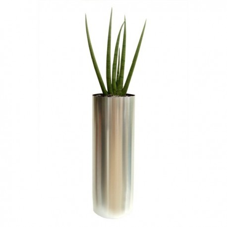 Stainless Steel Tall Cylinder